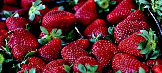 Pourquoi il pourrait ne pas y avoir de fraises cette année ?