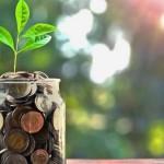 DOSSIER : 20 placements pour payer moins d'impôts