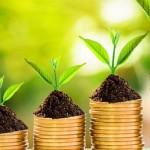 Bourse : tout ce que vous devez savoir pour vous enrichir rapidement